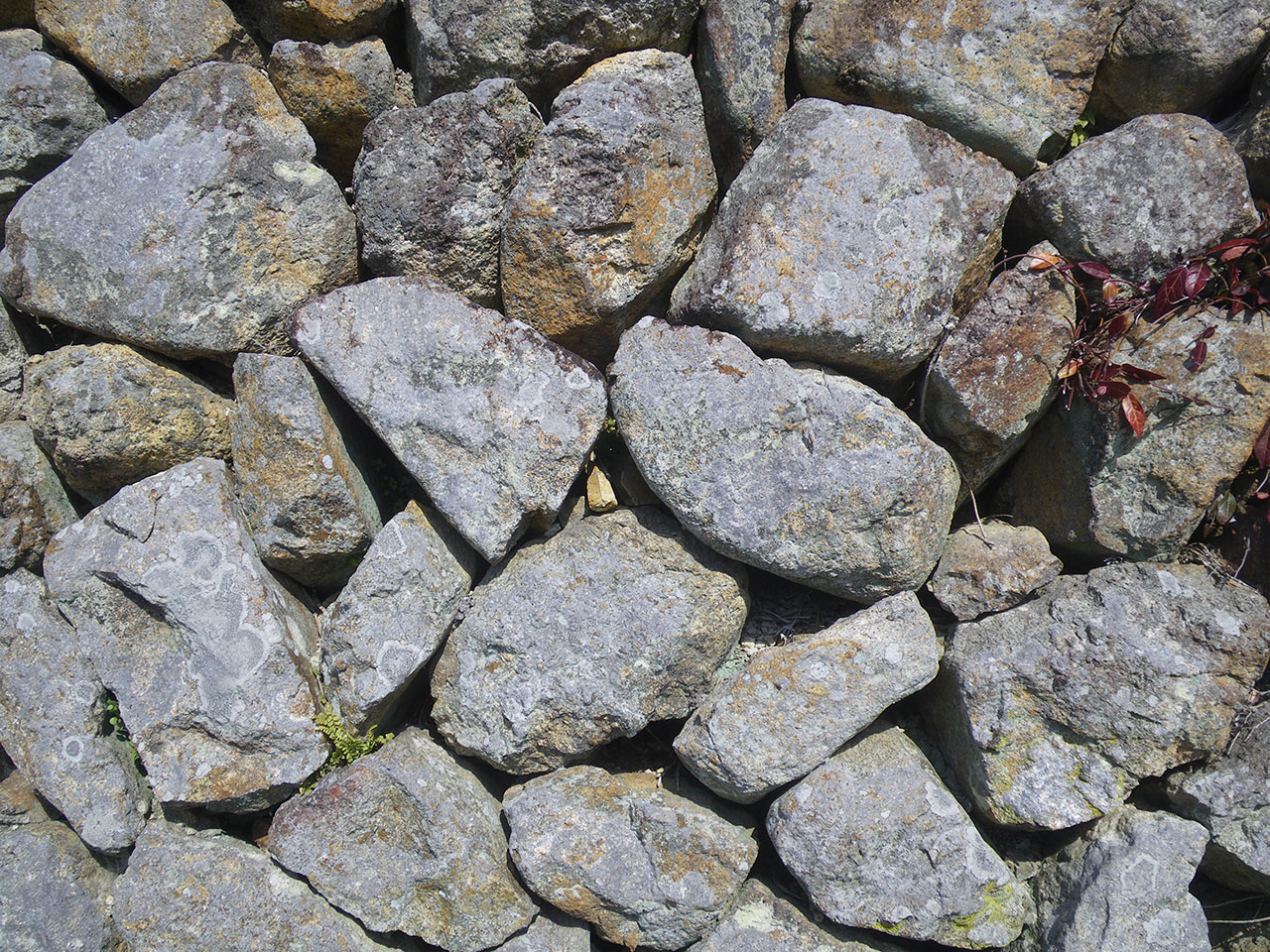 pentax w60で撮影した石垣